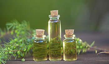 درمان جوش با روغن درخت چای(TTO)