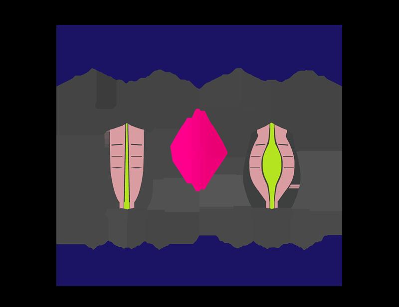 بارداری بعد از عمل ابدومینوپلاستی