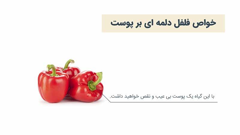 سبزیجات مفید برای سلامت پوست